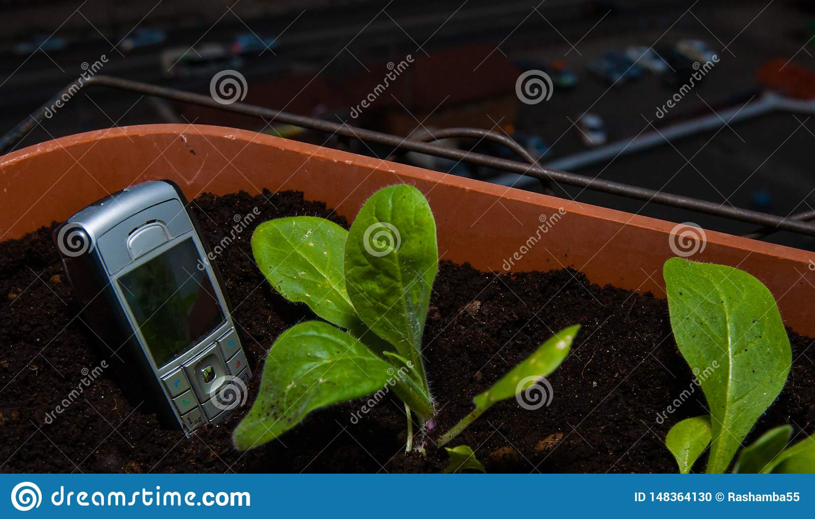 cell phone sticks out of the ground in a pot of flowers on the balcony