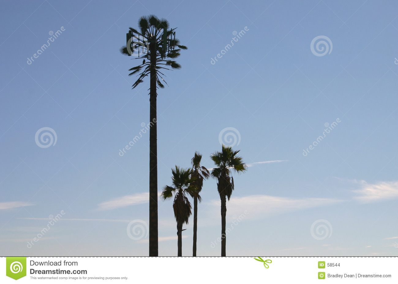 Cell Phone Tower Disguised As A Palm Tree Stock Images