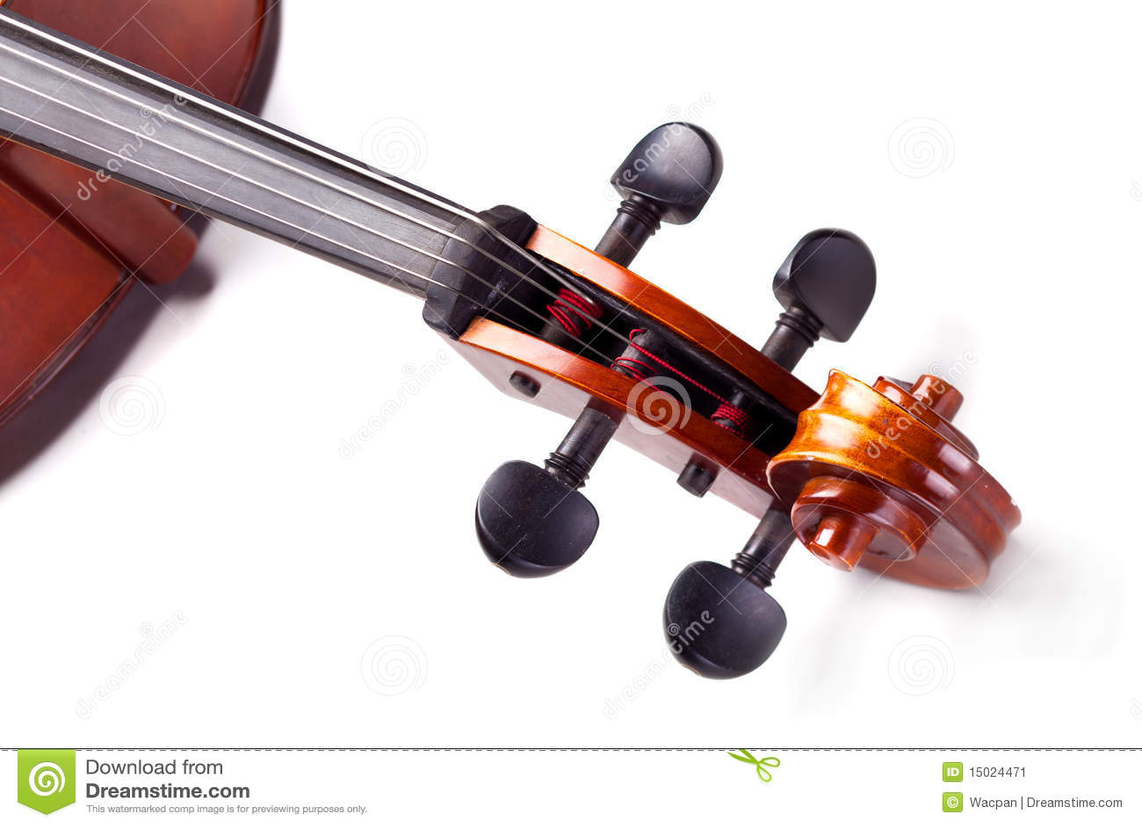 Cello s scroll