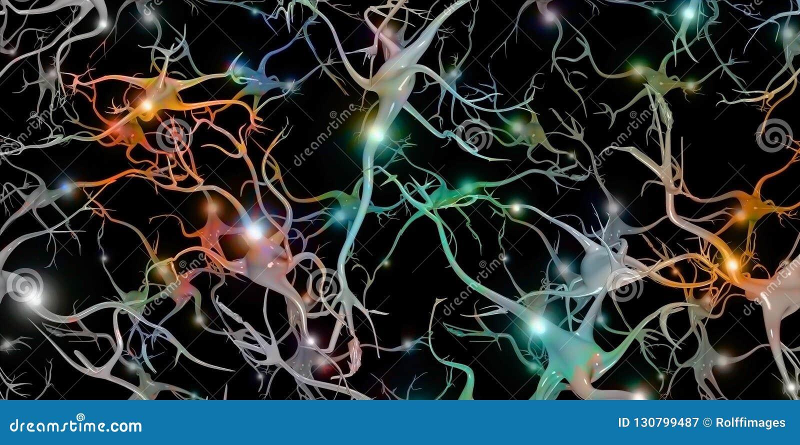 Cellule cerebrali