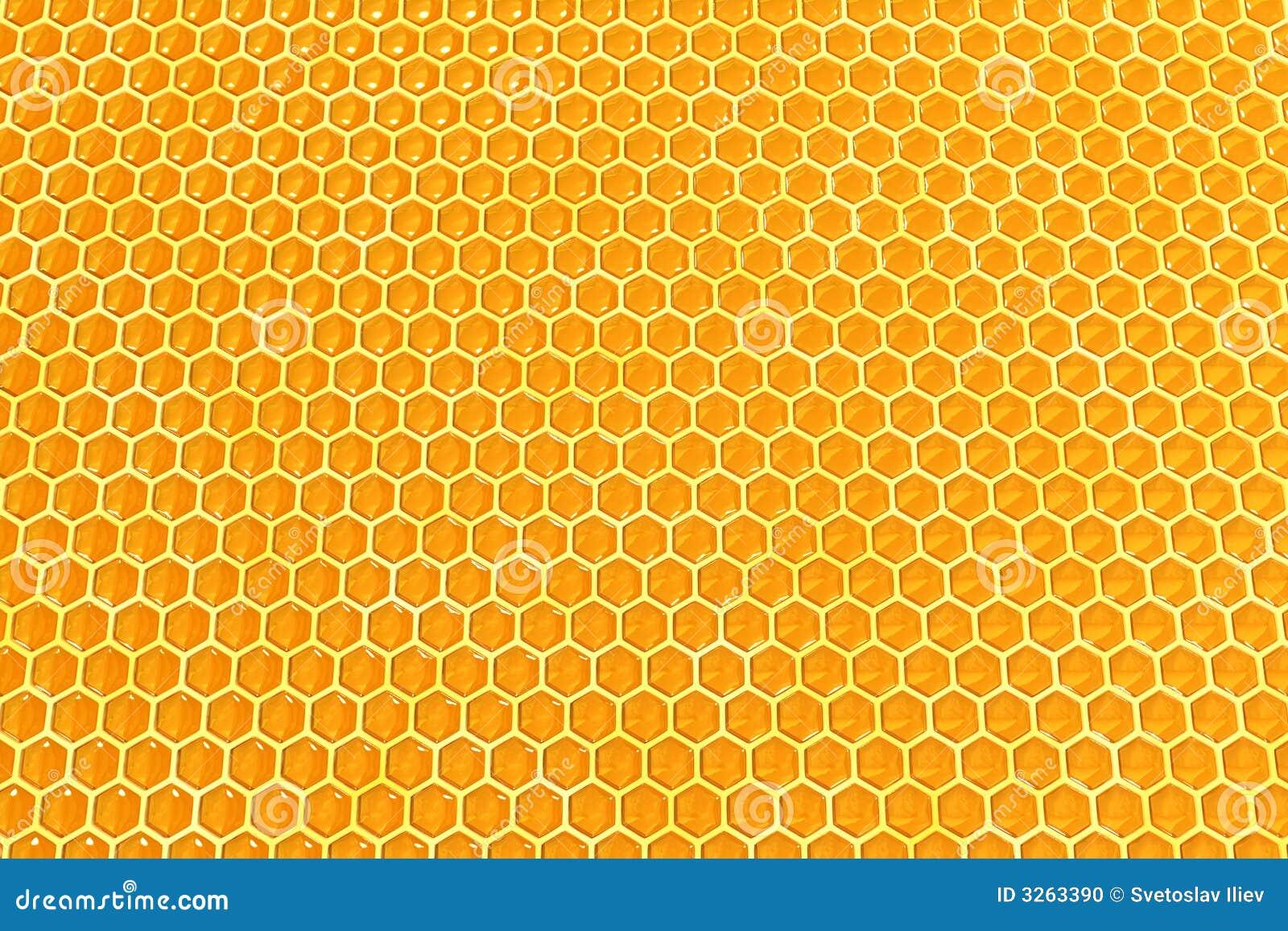 Cellules de miel