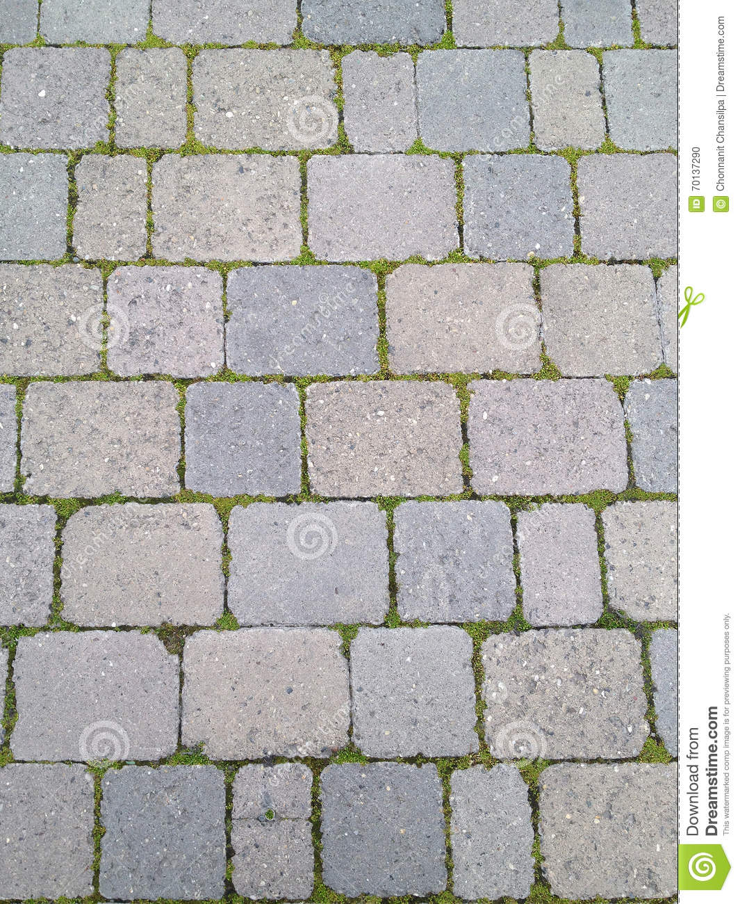 Cement block floor with grass in between stock photography for Concrete block floor
