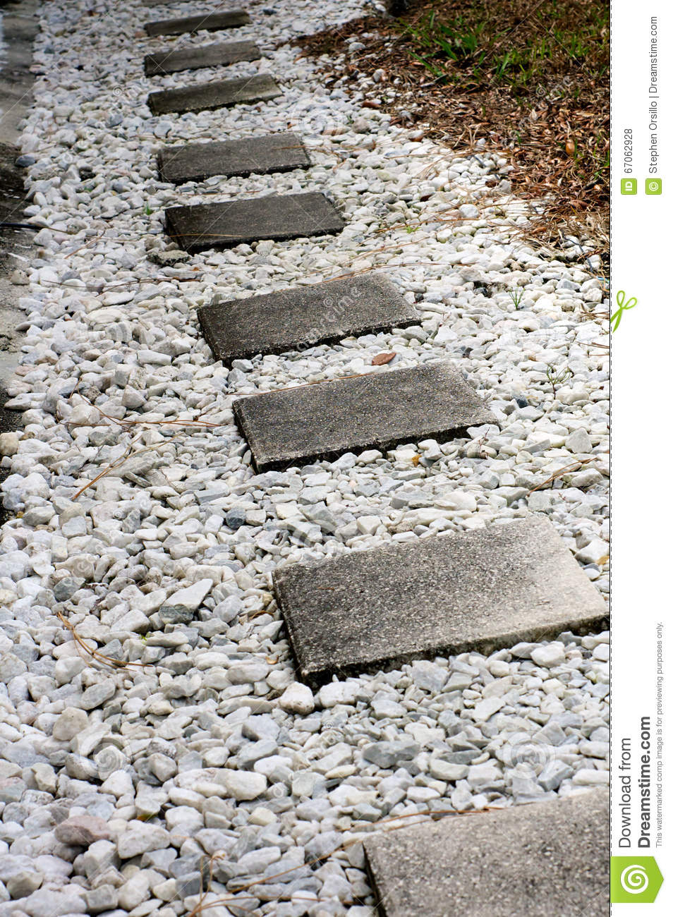 Cement stepping stone walkway stock photo image 67062928 for How to build a stepping stone path