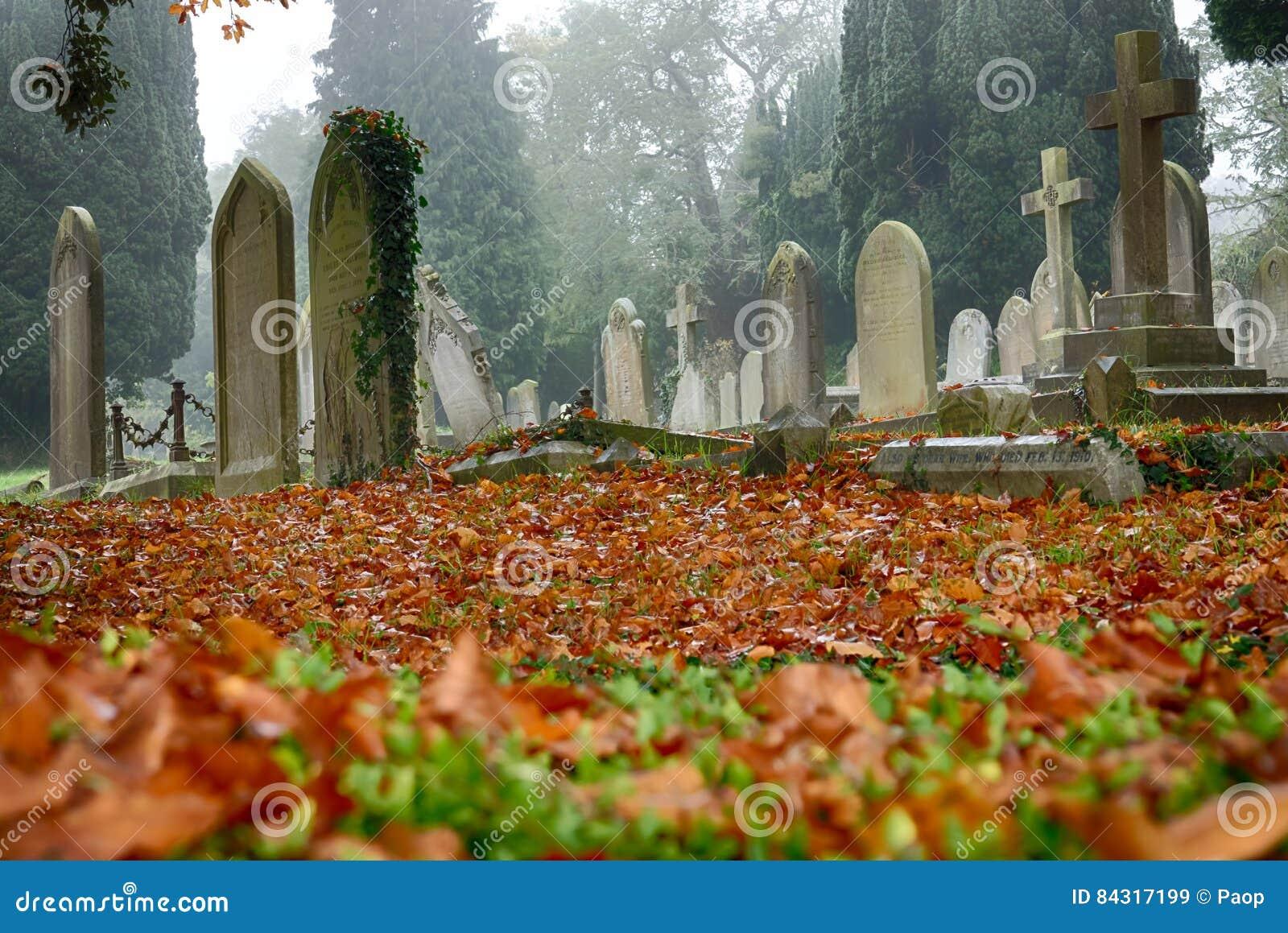 Cementery in autumn