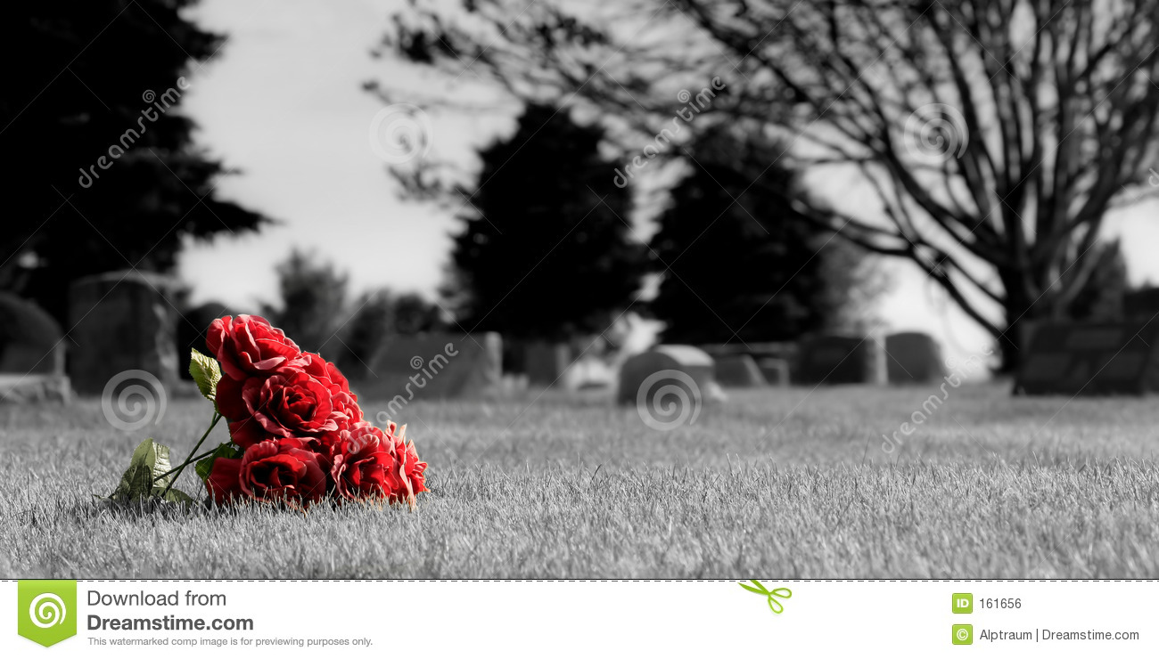 Cemetery Flowers Royalty Free Stock Image Image 161656