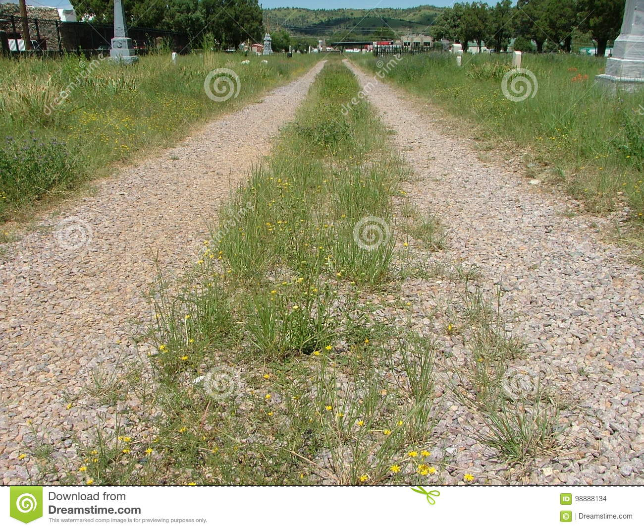 cemetery road two ruts stock photo image of grassey 98888134