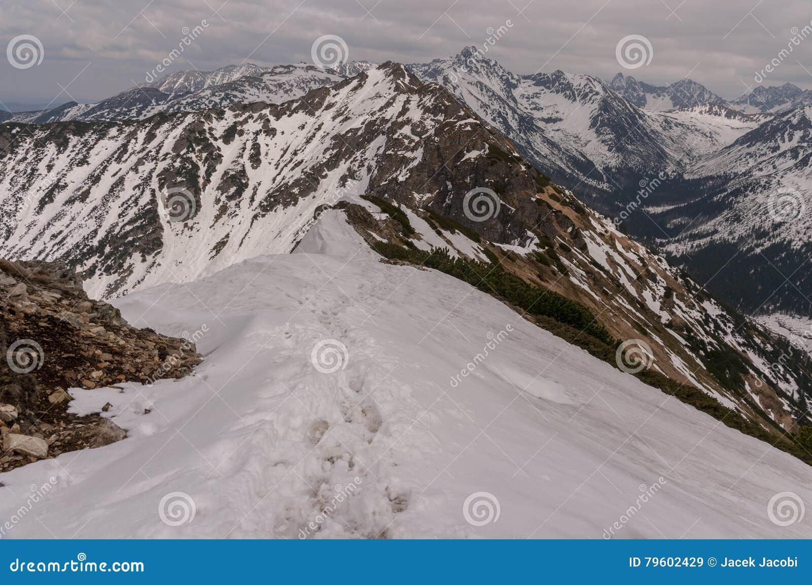 Cenário bonito da fuga de montanha nas montanhas de Tatra