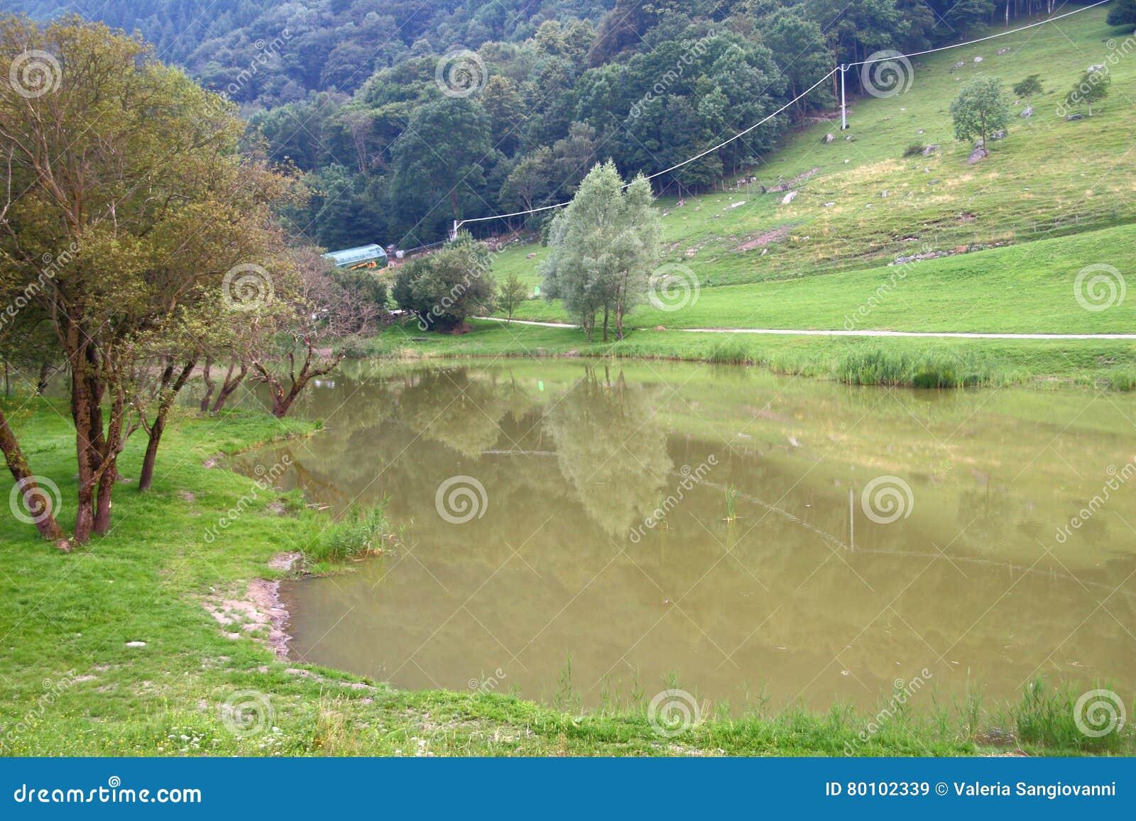 Cenário do lago