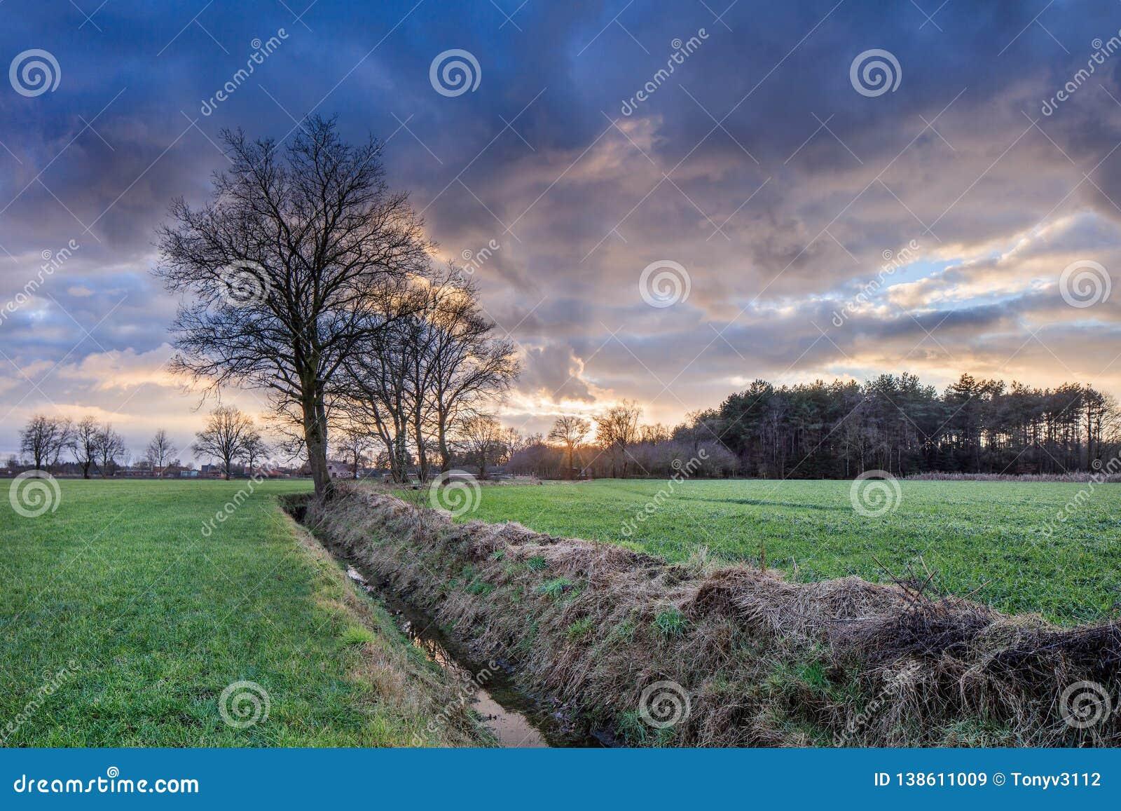 Cenário rural, campo com árvores perto de uma vala e por do sol colorido com nuvens dramáticas, Weelde, Bélgica