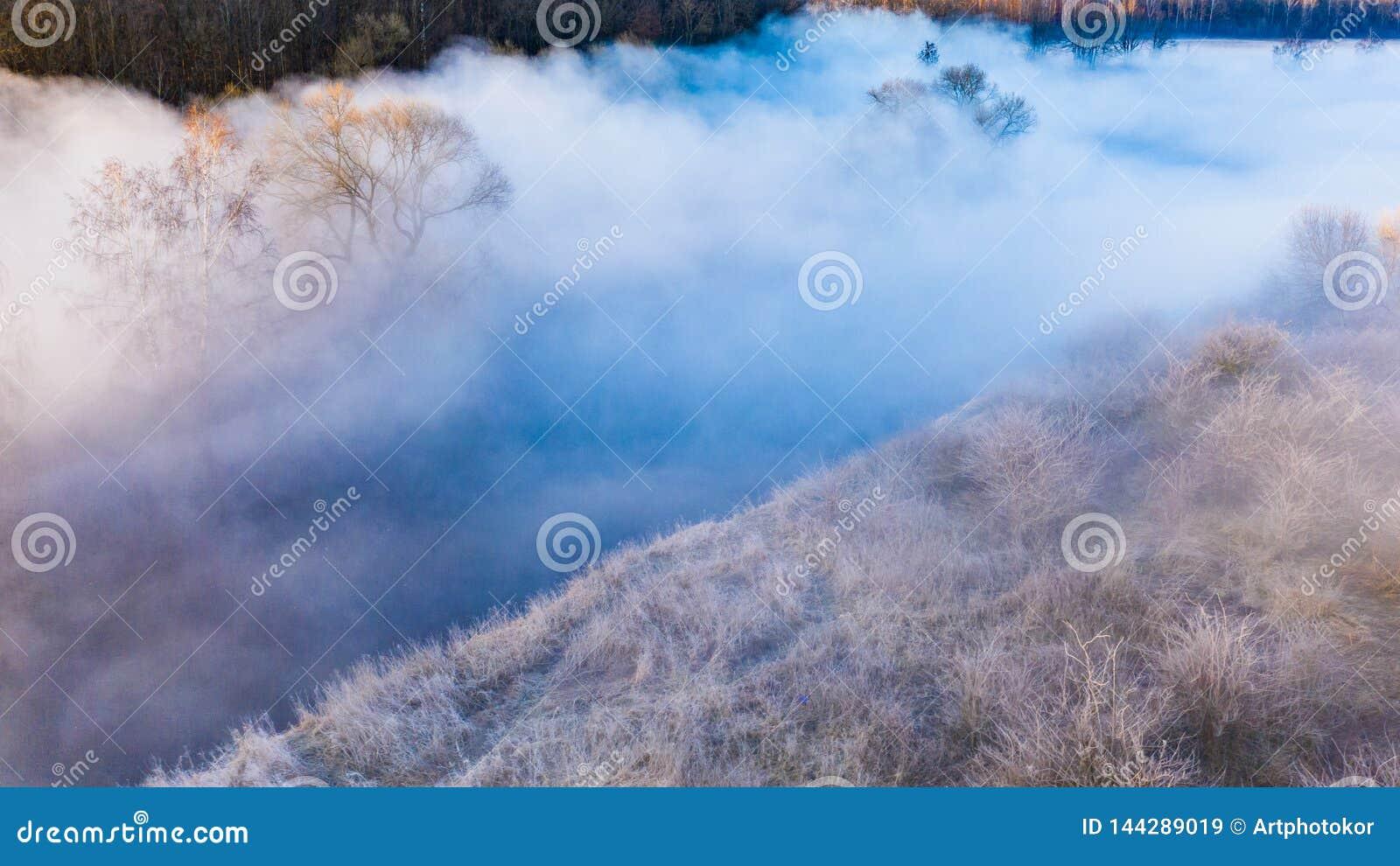 Cenário surpreendente Névoa densa que cobre a paisagem aérea do rio pequeno Conceito da natureza