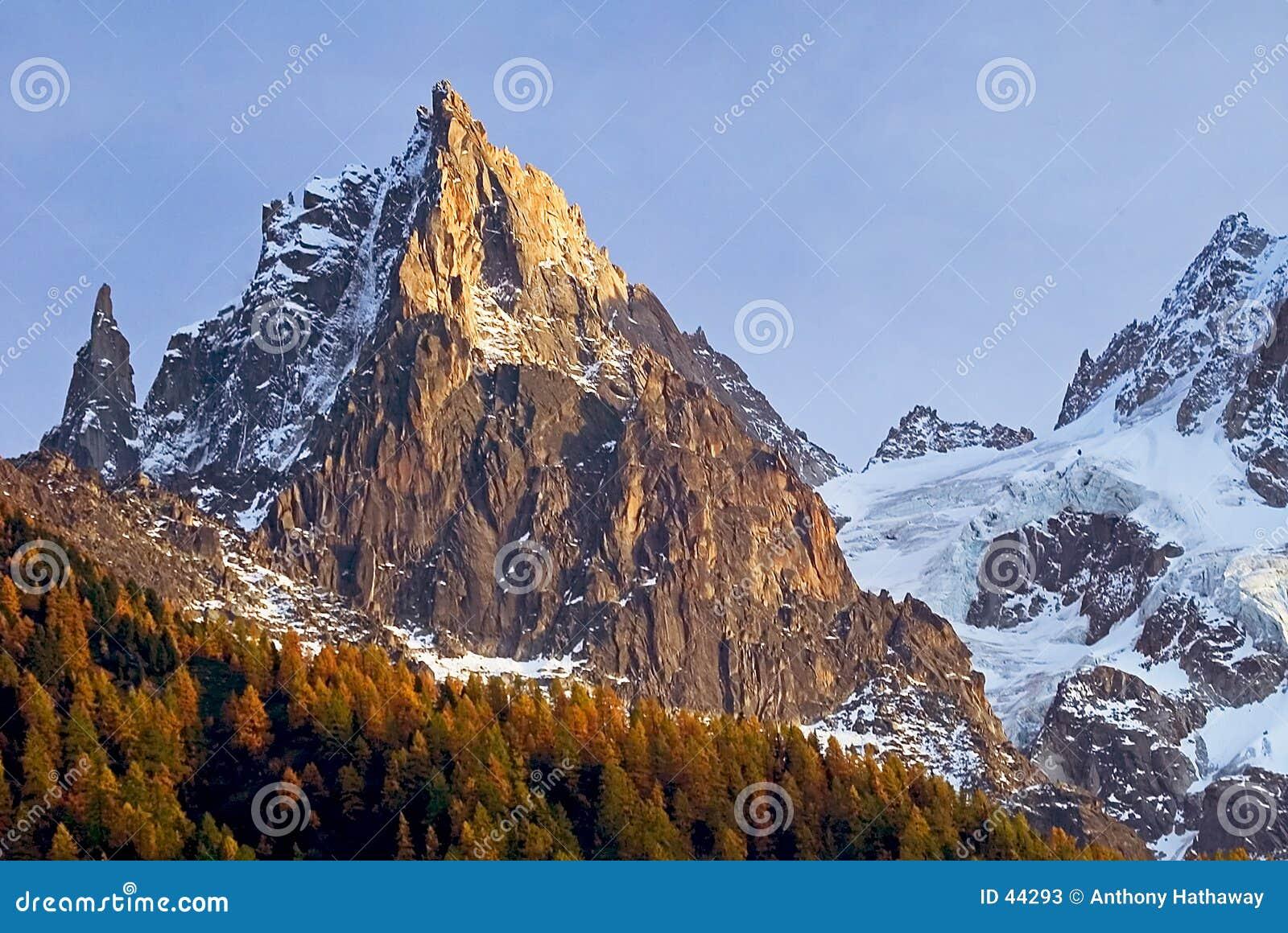 Cena alpina com larício