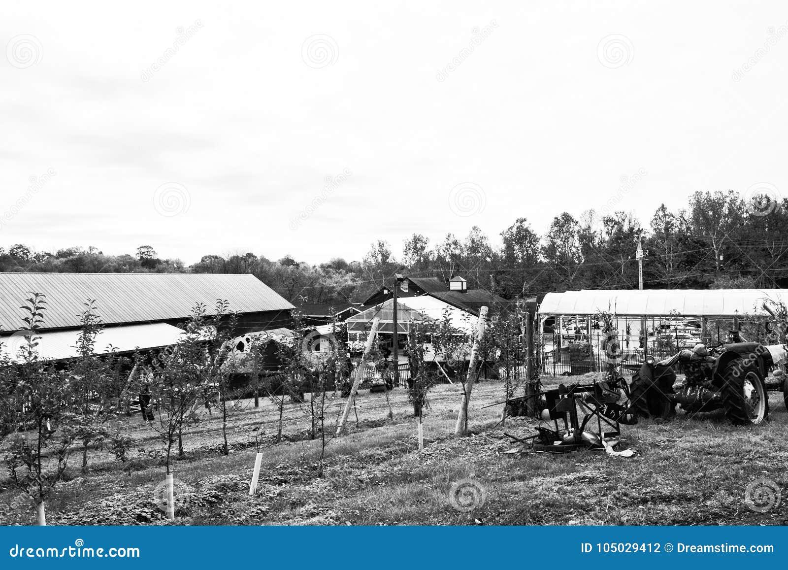 Cena da exploração agrícola