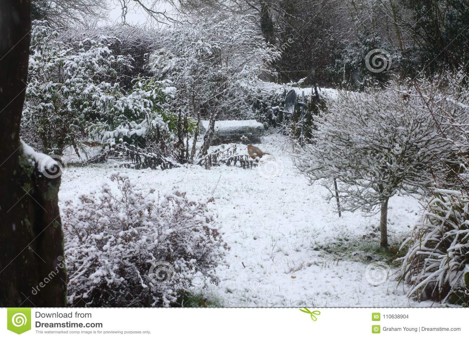Cena da neve do Suffolk