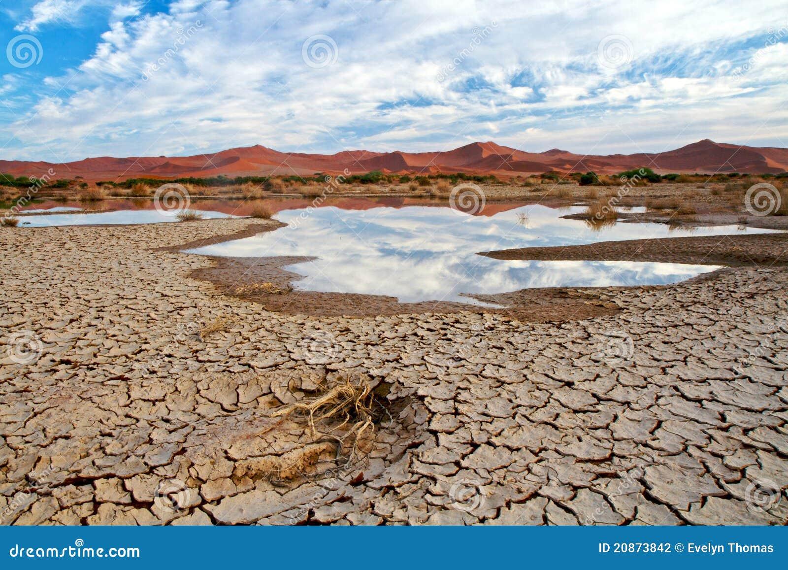 Cena do deserto com água