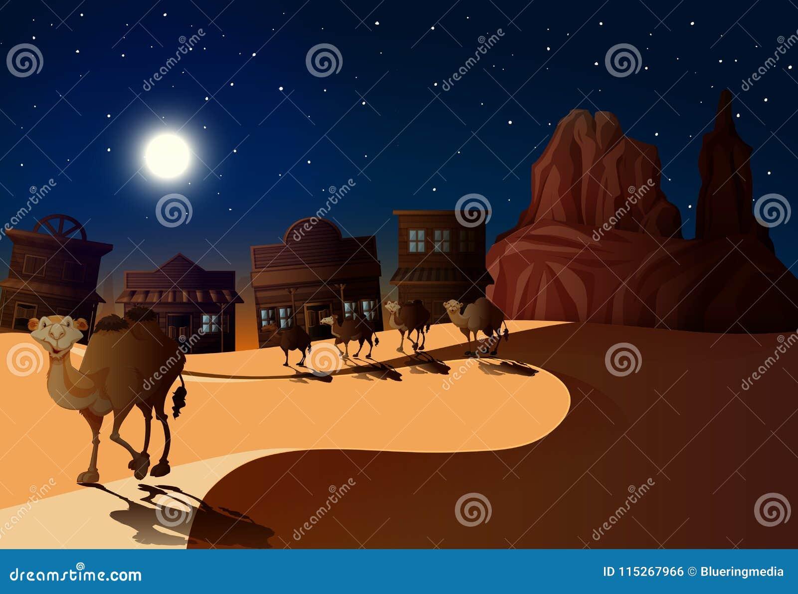 Cena do deserto na noite com camelos