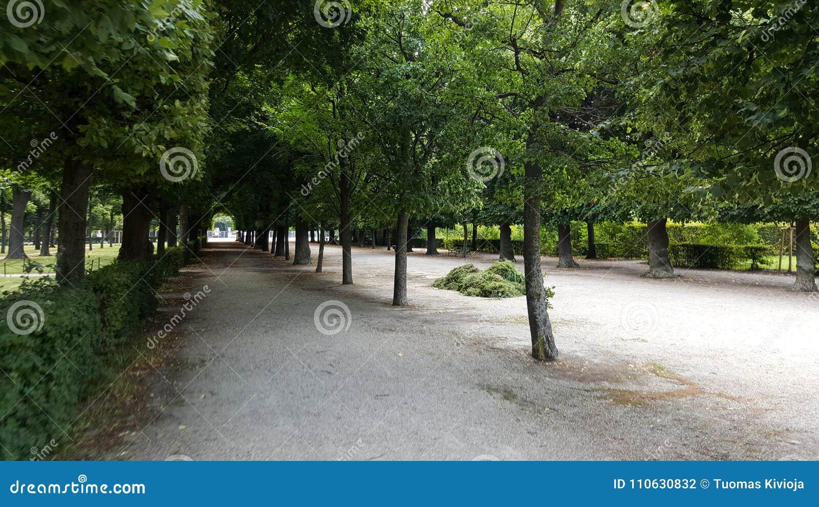 Cena do interior dos jardins do palácio de Schönbrunn