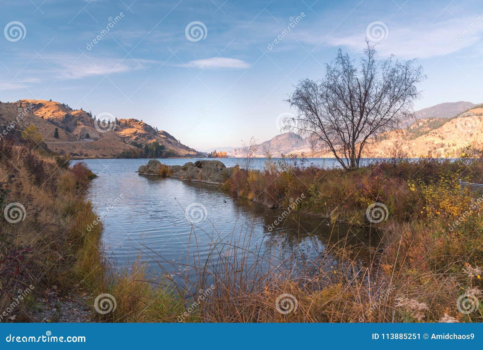 Cena do outono do lago e das montanhas com gramas e folhas do outono com luz morna do por do sol