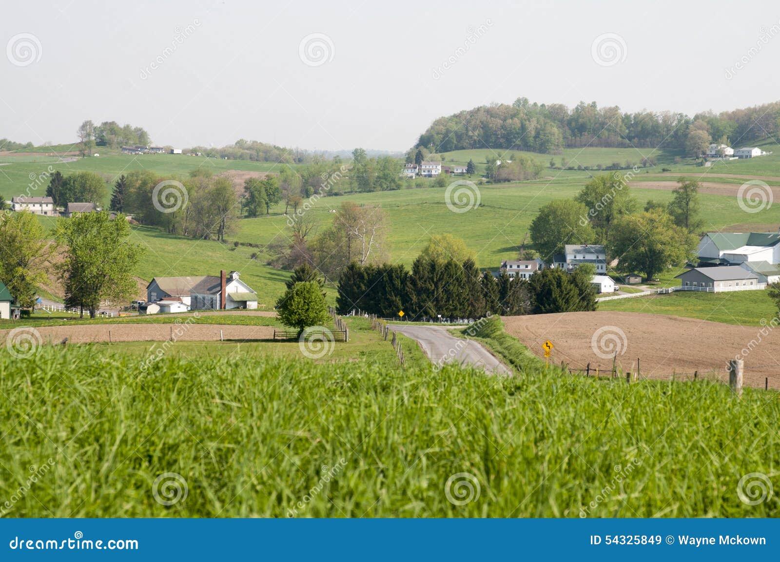 Cena do país de Ohio Amish