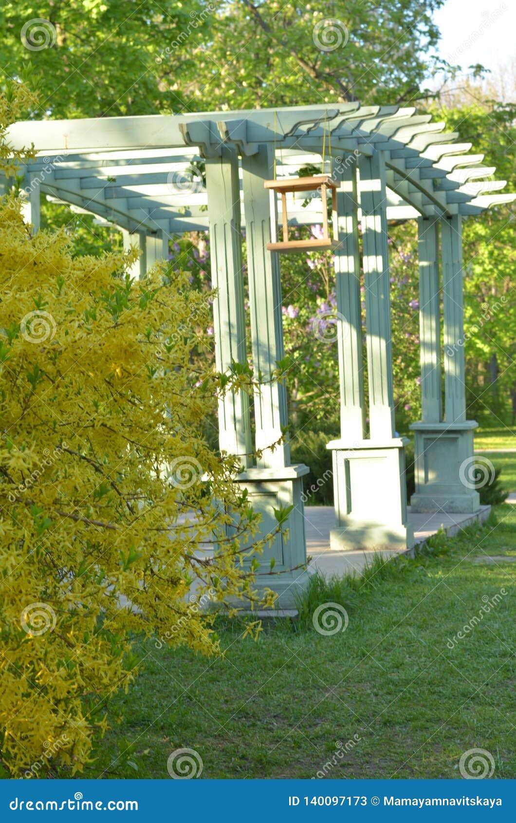 Cenador de madera en un parque verde en día de verano soleado landscaping