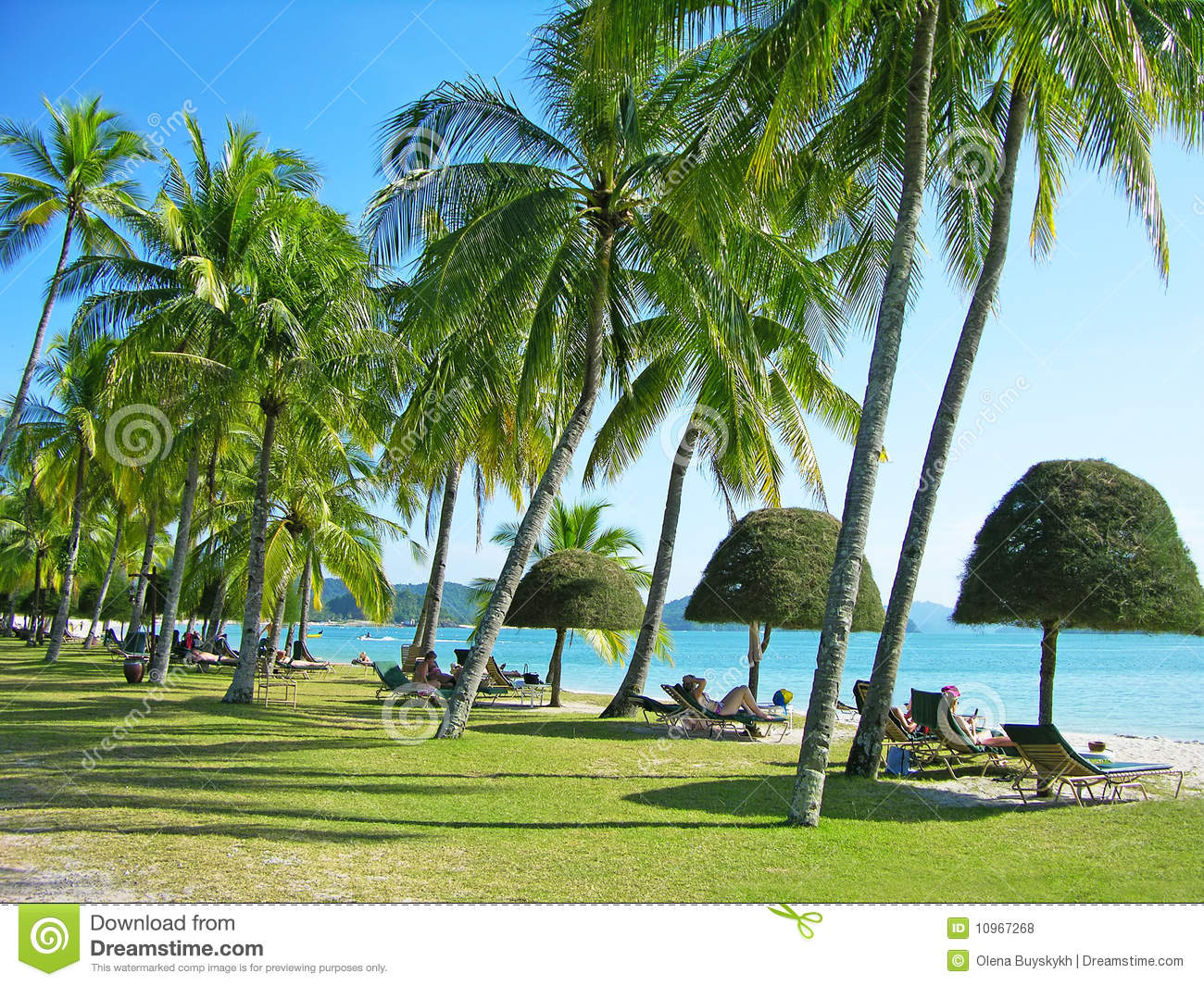 Relaxing tropical beach with palm-trees and sunbeds, Langkawi island ...