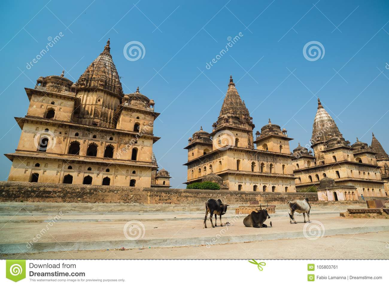 Cenotaphs At Orchha, Madhya Pradesh  Also Spelled Orcha, Famous