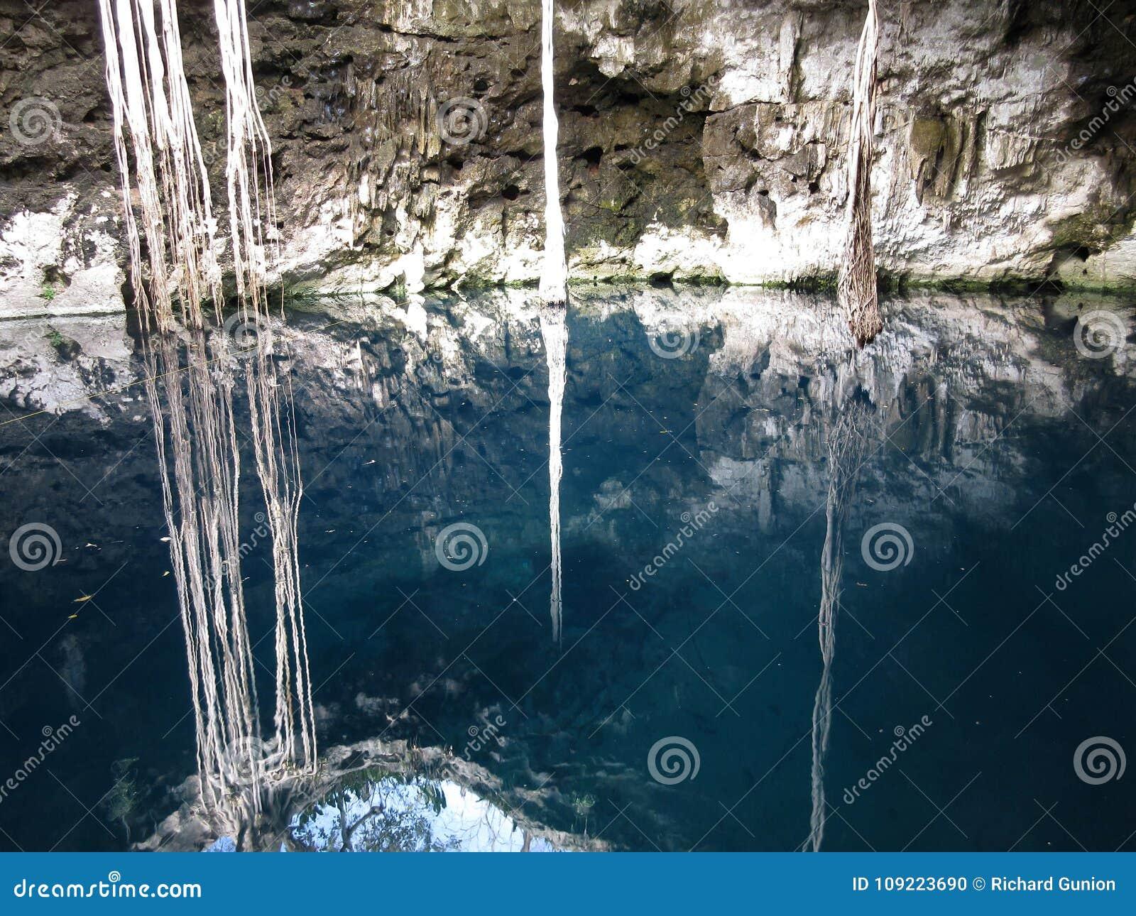 Cenote tropical en Yucatán México