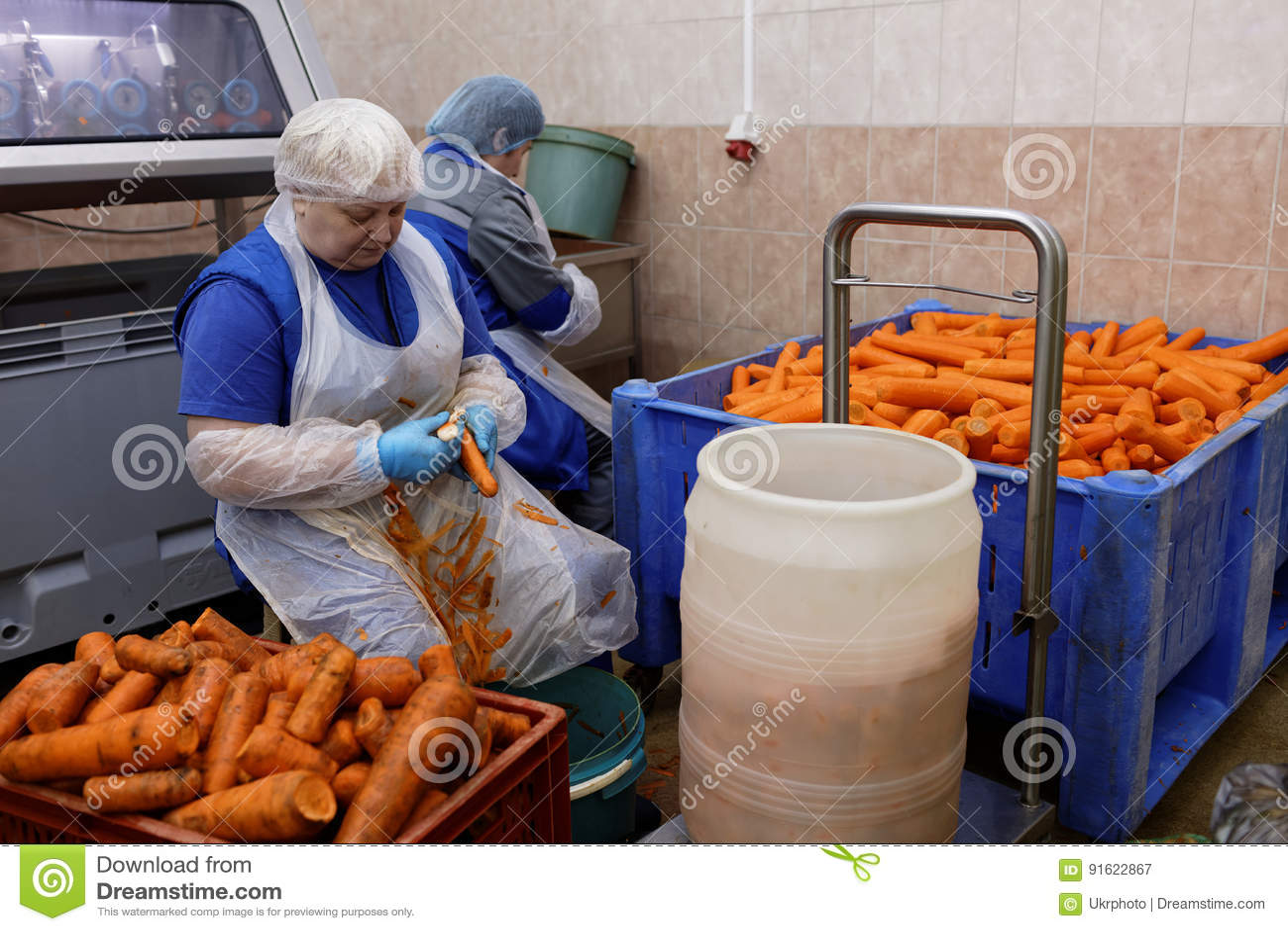 Cenoura da casca do trabalhador em uma fábrica de tratamento do alimento