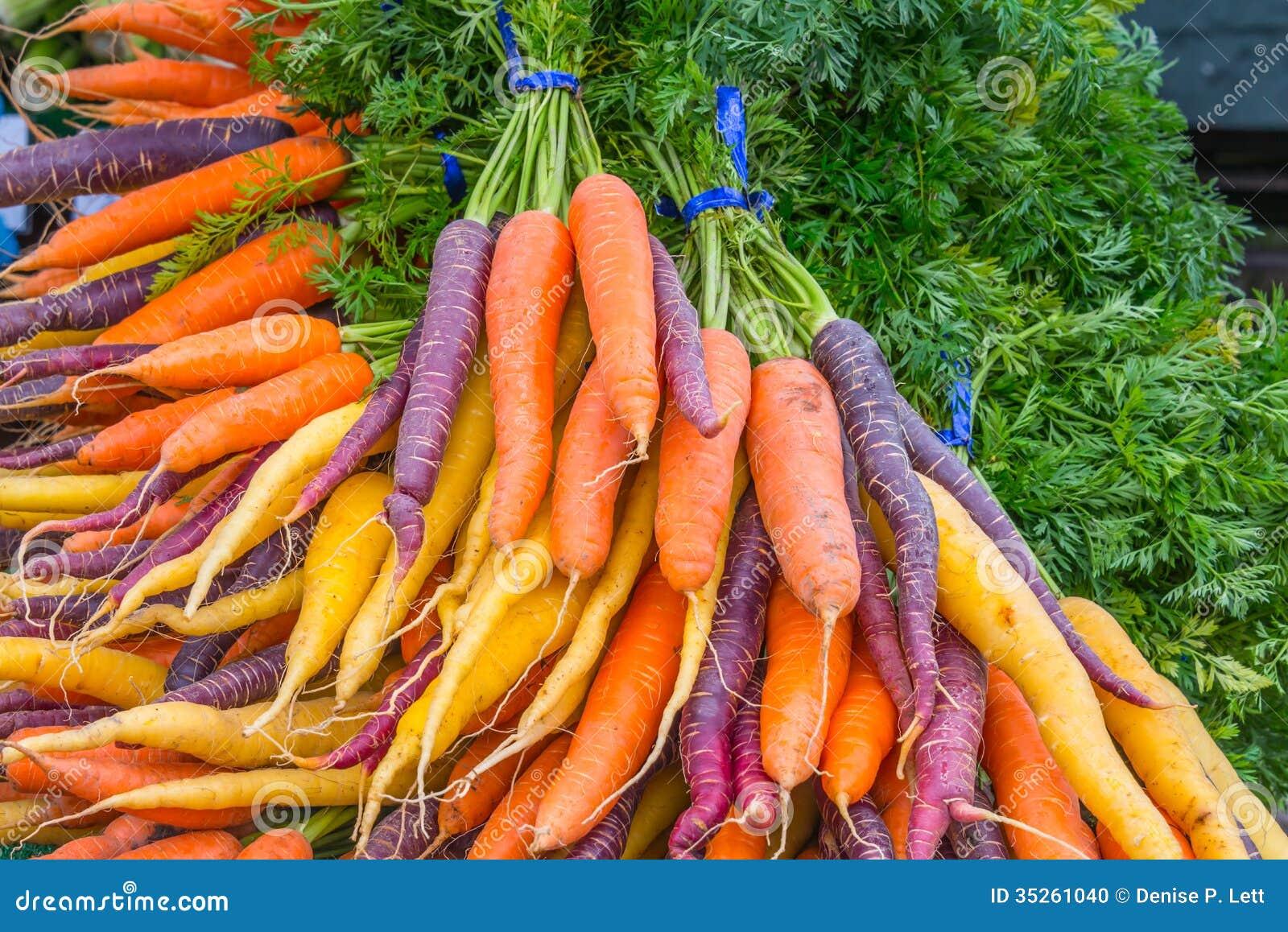 Cenouras orgânicas do arco-íris dos grupos