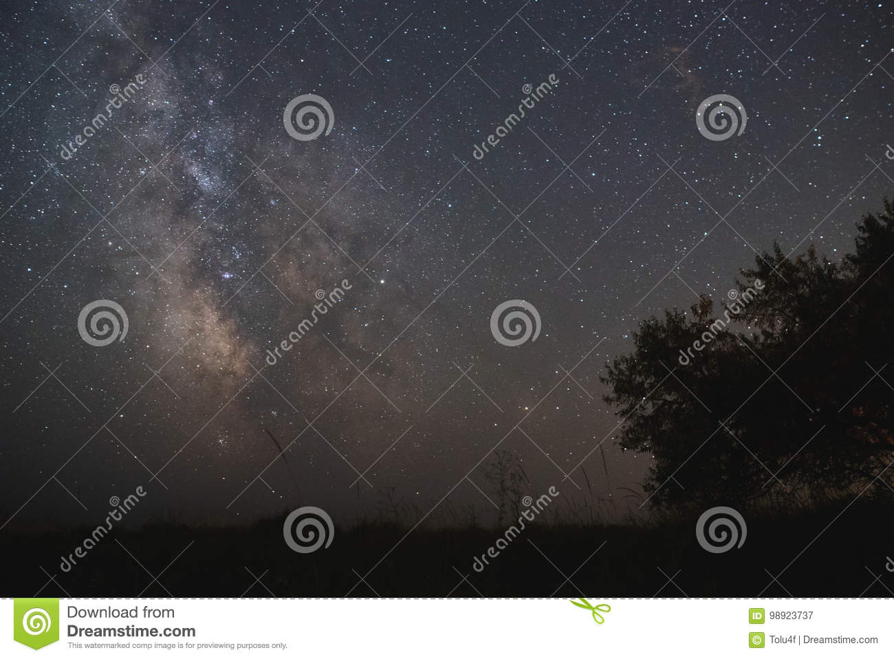 The center of our home galaxy, the Milky Way rising over the field, the night stars landscape, the tree under stars