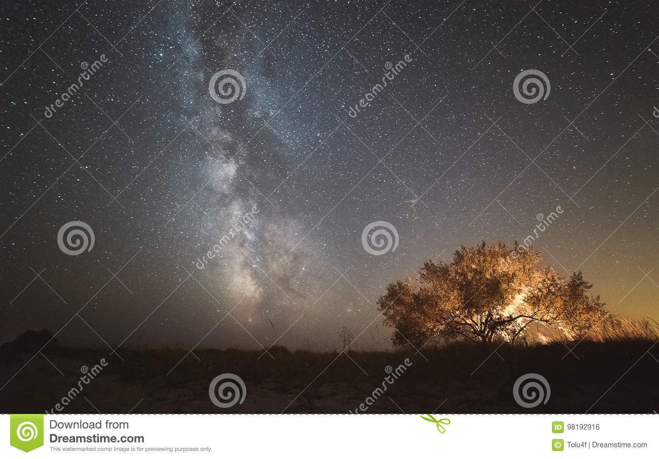 The center of our home galaxy, the Milky Way rising over the field, the night stars landscape, the tree glows