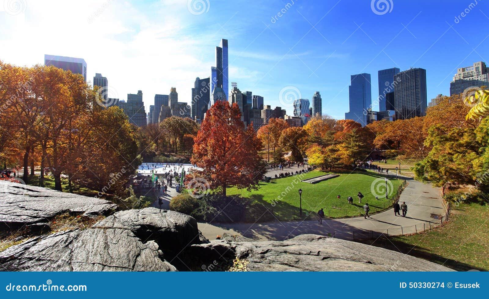 Centraal park bij zonnige dag, de Stad van New York