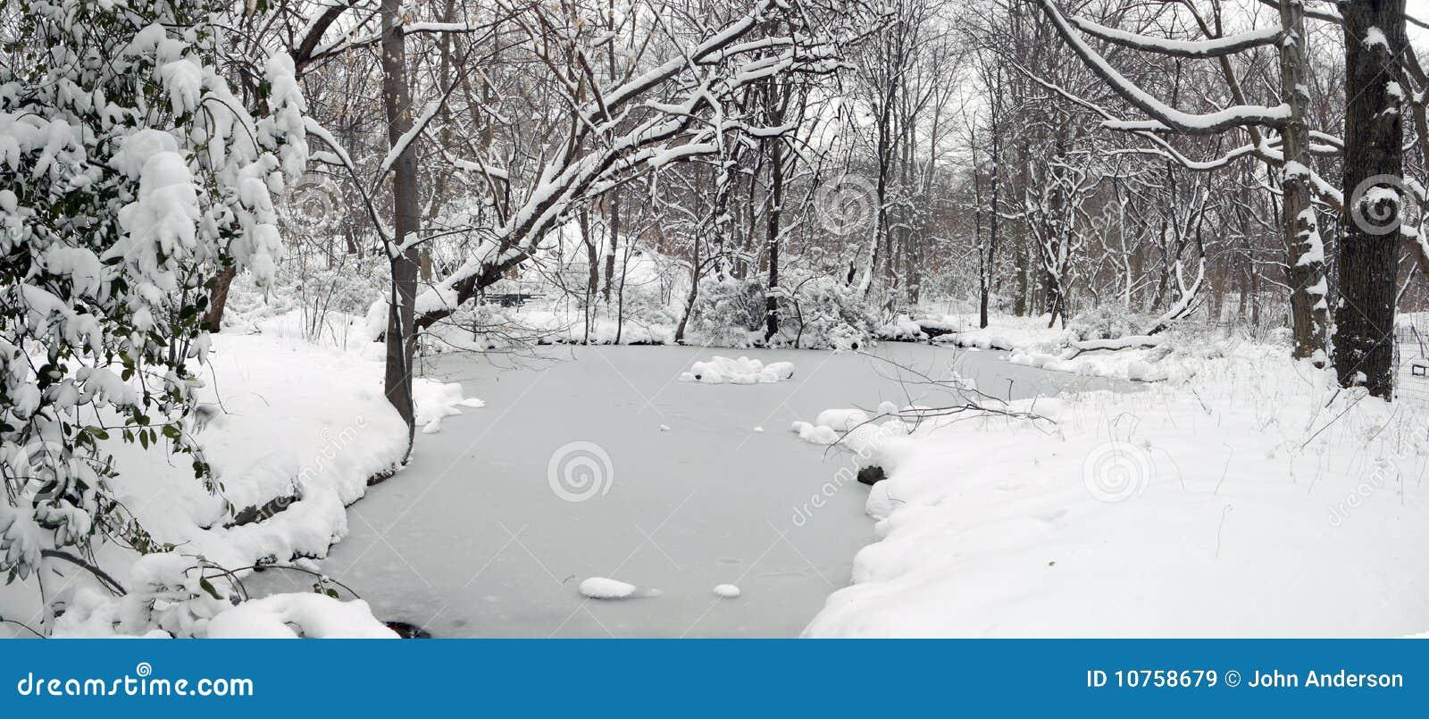 Central Park após a tempestade da neve