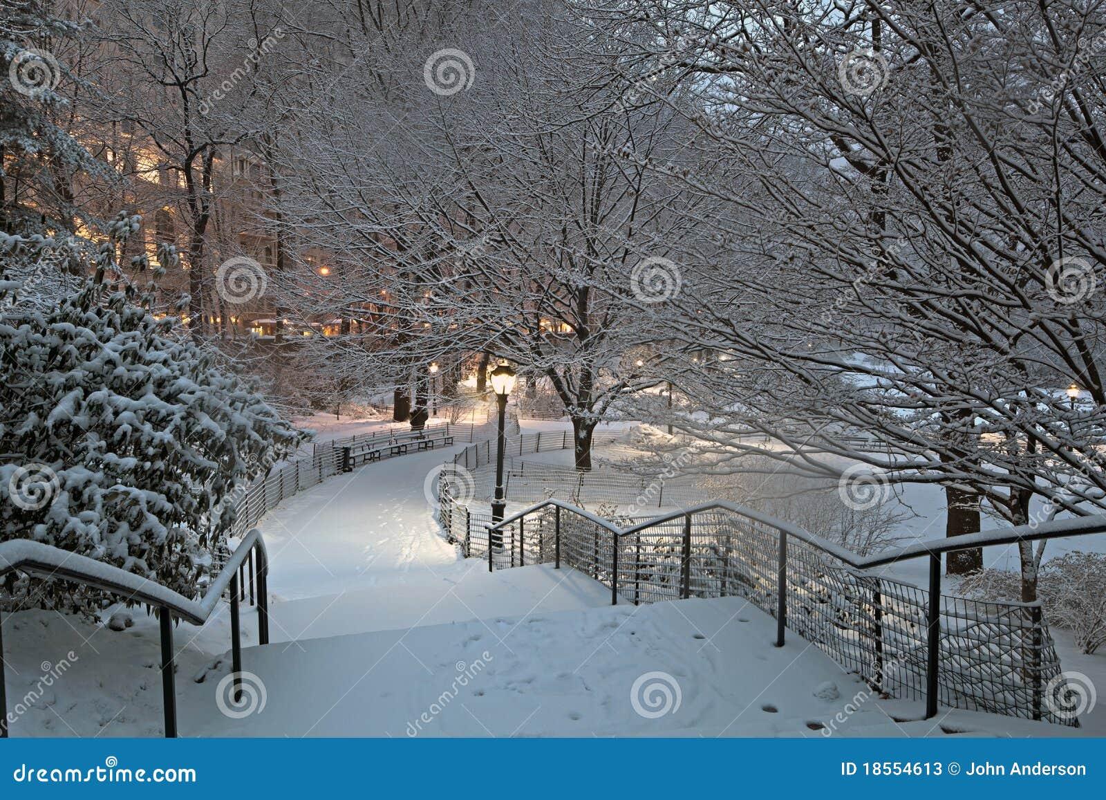 Central park dans la temp te de neige image stock image - Photos de neige gratuites ...