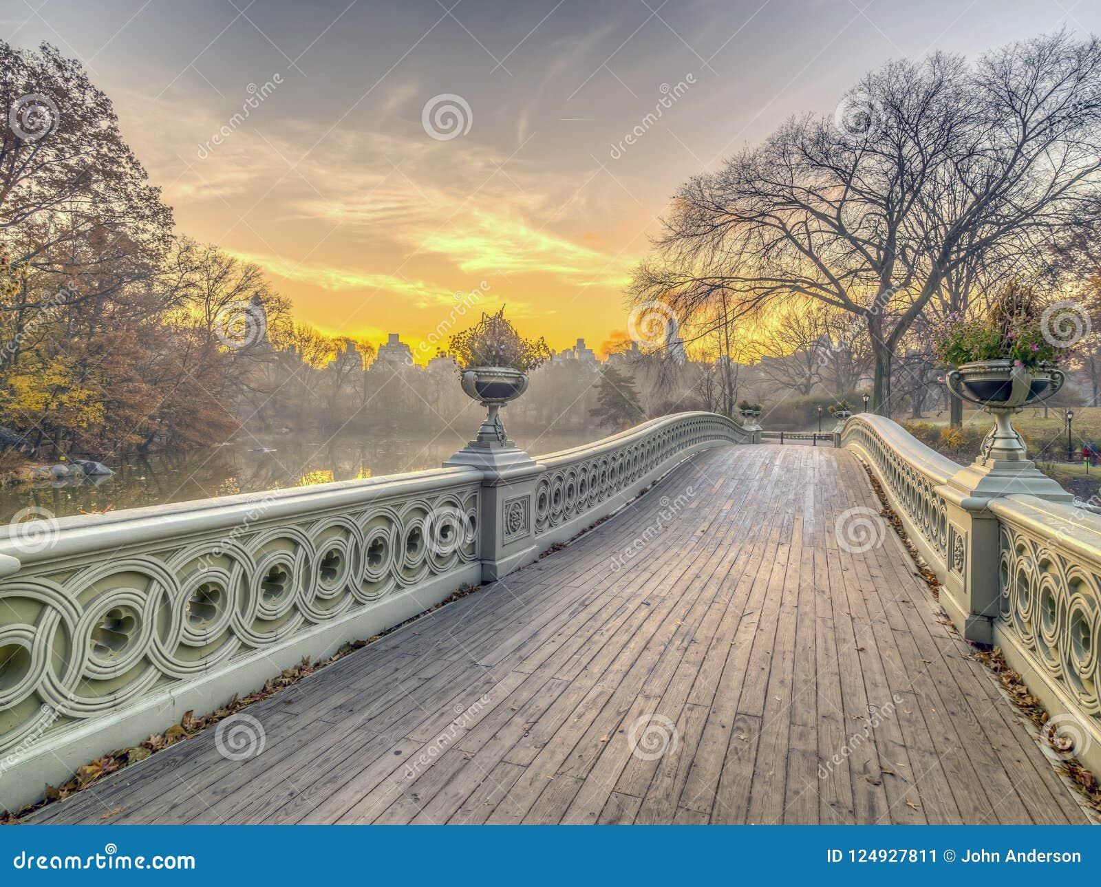 Central Park del puente del arco