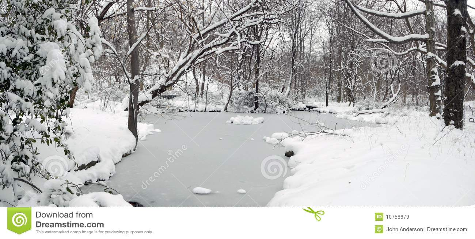 Central Park dopo la tempesta della neve
