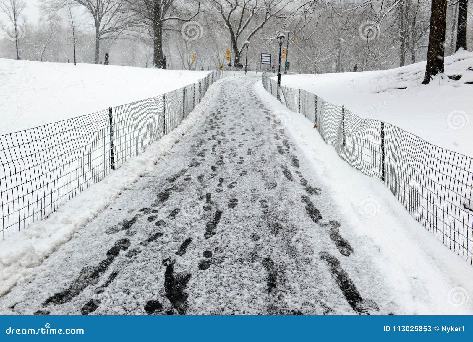 Central Park durante el centro de la nevada con la nieve que cae en New York City
