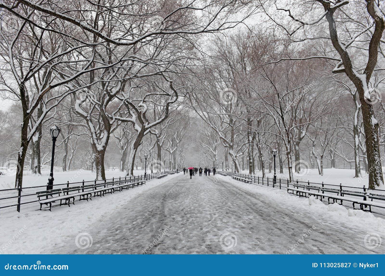 Central Park durante o meio da tempestade de neve com a neve que cai em New York City