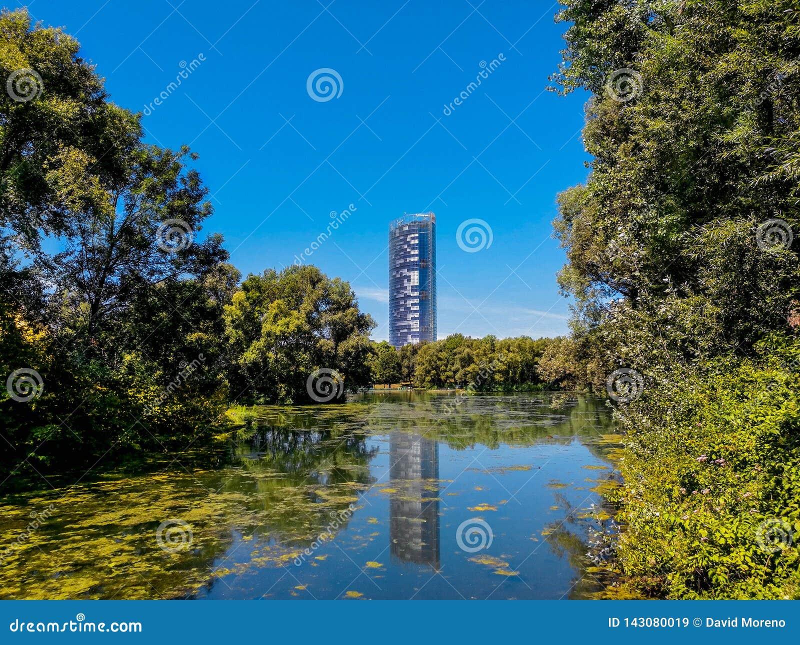 Central Park jesień i budynku odbicie nad jeziorem w Rheinaue parku w mieście Bonn