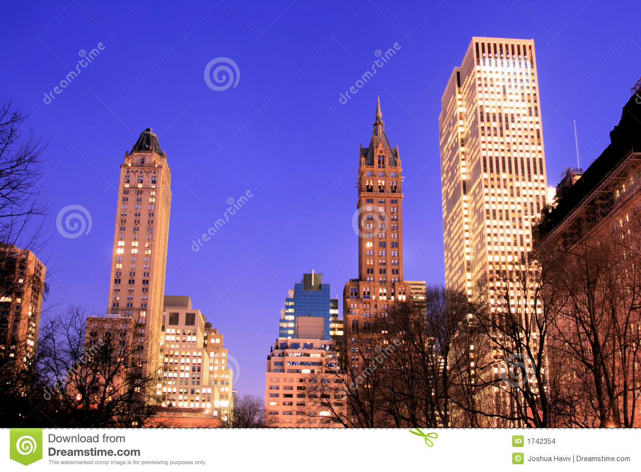 central park and manhattan skyline new york city royalty free stock photography cartoondealer. Black Bedroom Furniture Sets. Home Design Ideas