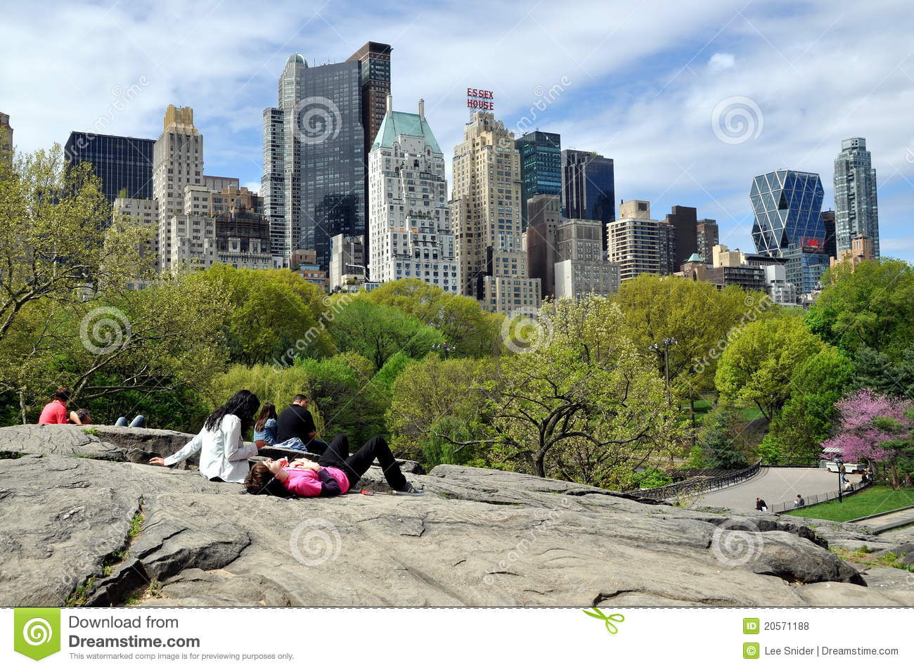 Central Park & NYC Skyline editorial stock photo. Image of