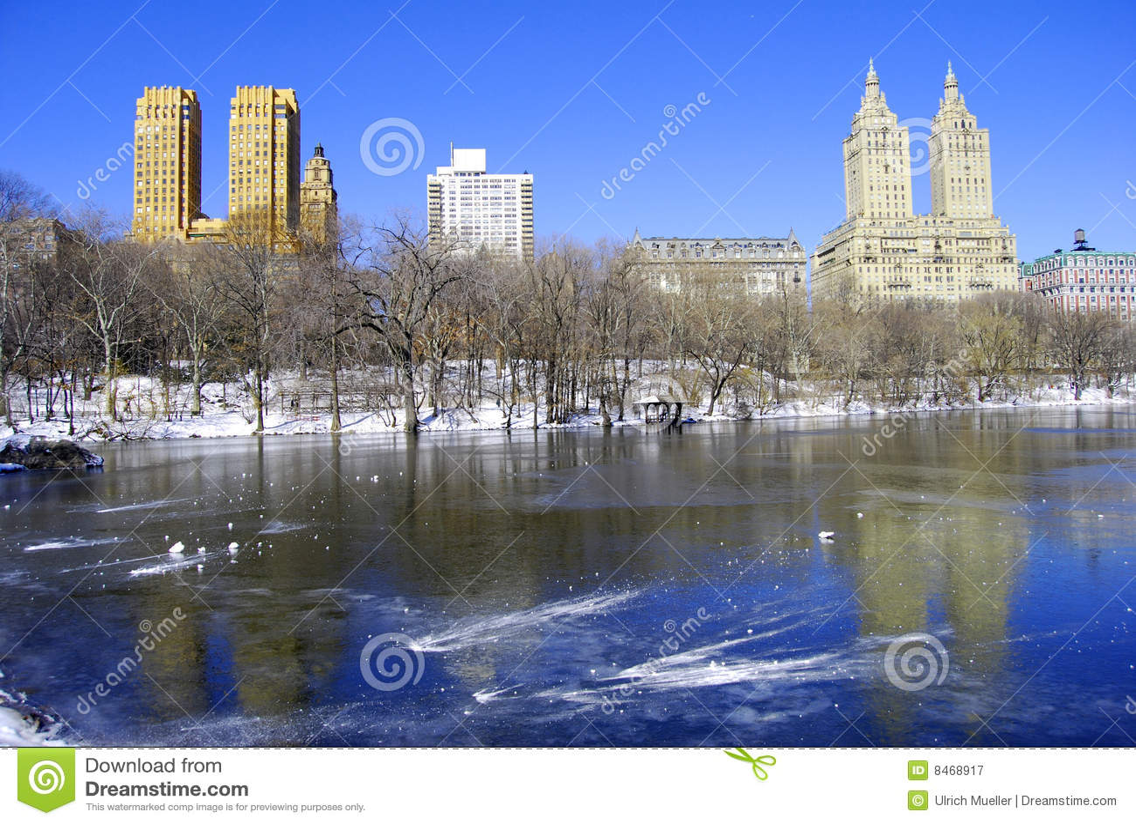 Central Park vinter