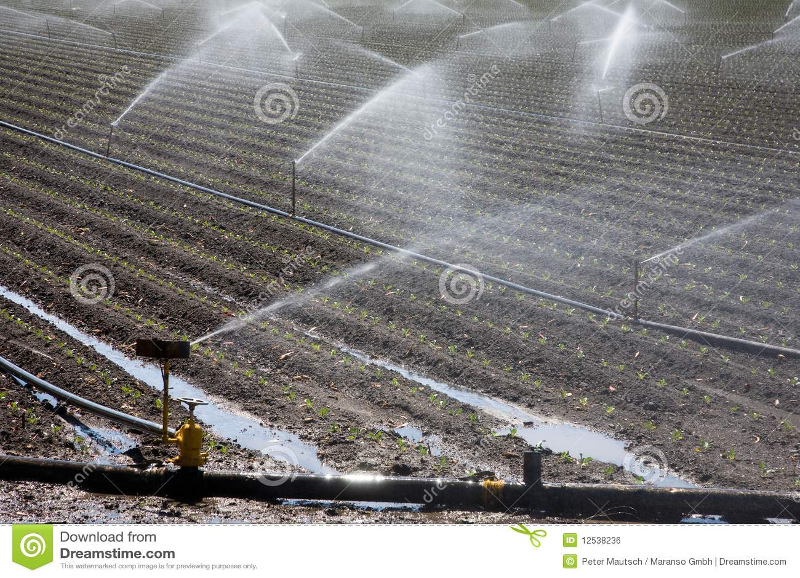 Centrale d irrigation