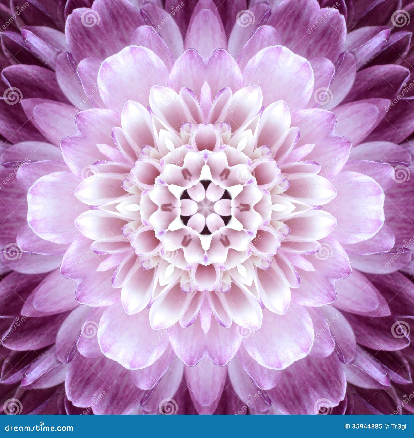Centro concéntrico rosado de la flor. Diseño de Mandala Kaleidoscopic