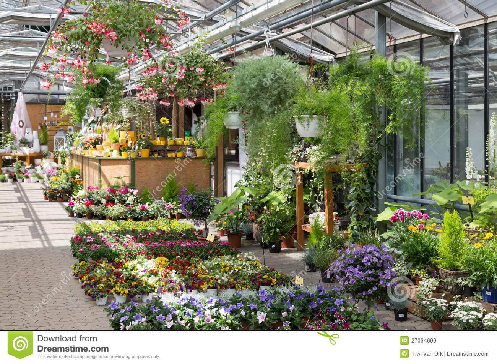 Centro de jard n que vende las plantas en un invernadero - Invernaderos de jardin ...