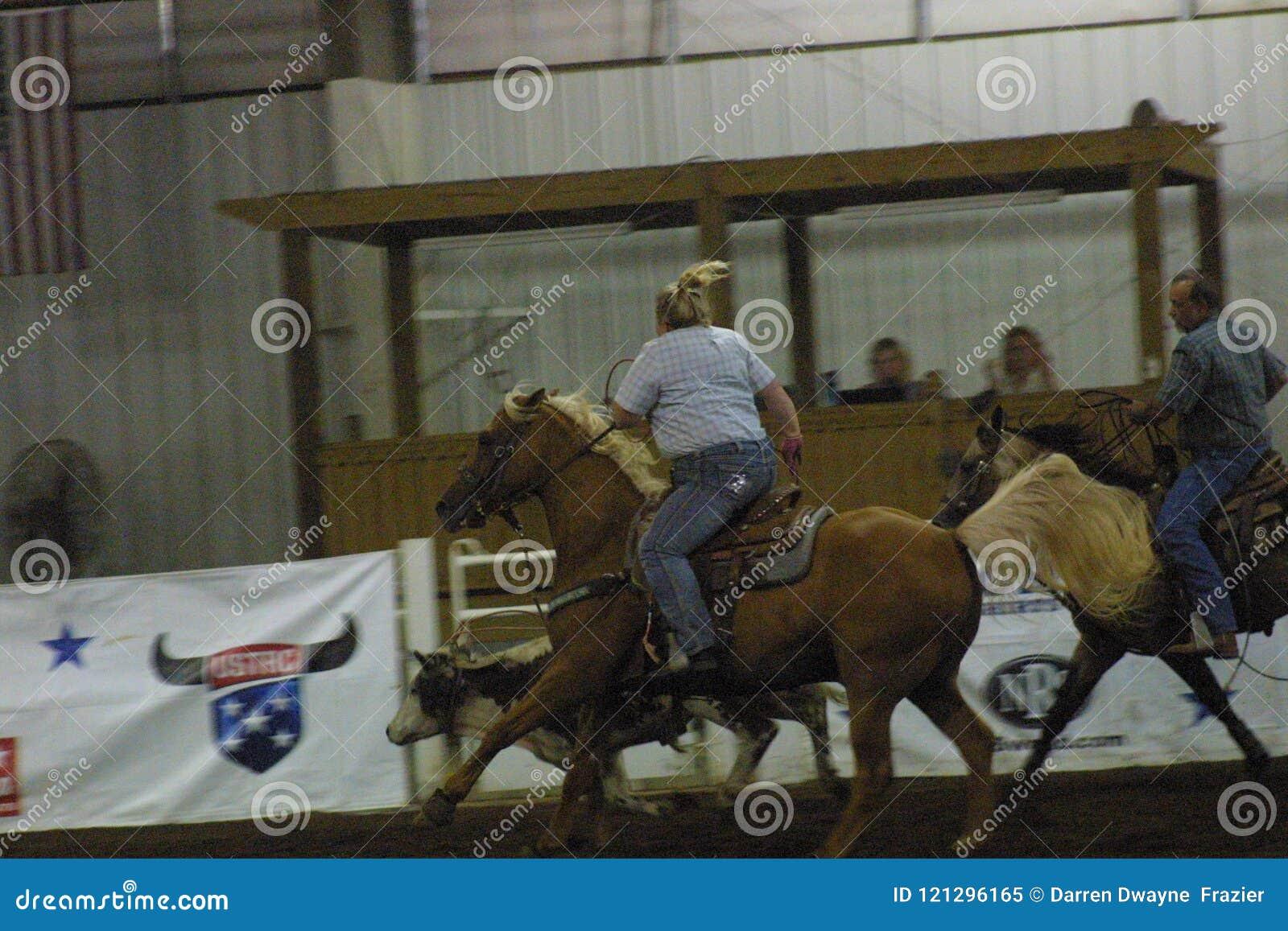 Centro equestre nacional 2016