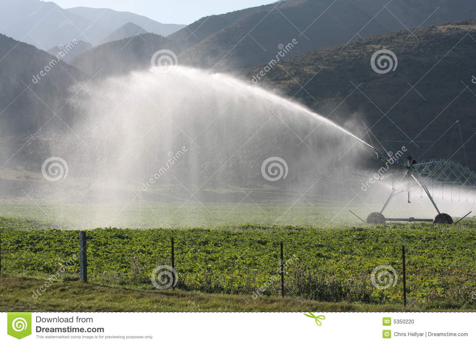 Centrum-spil irrigatie