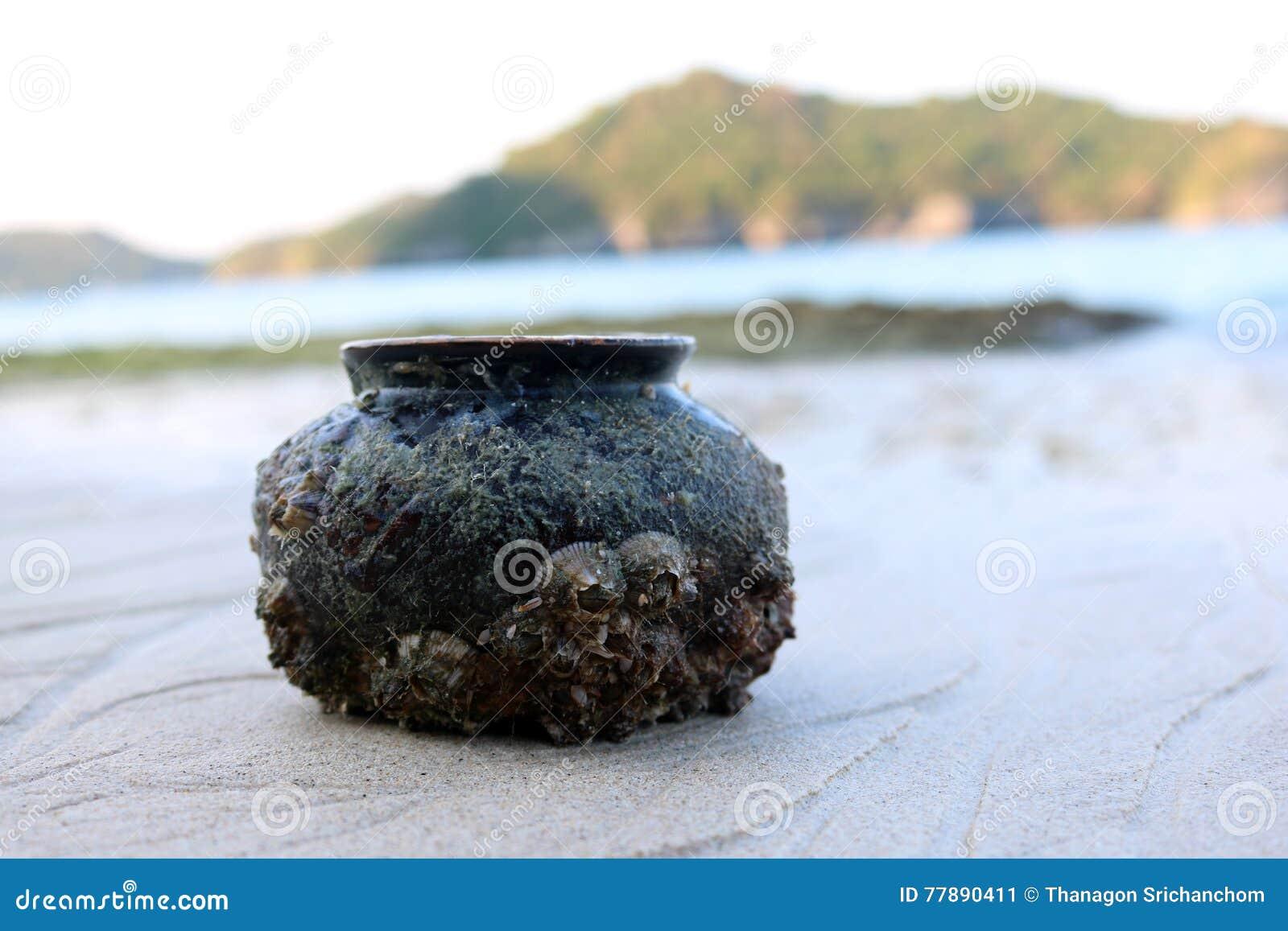 Cerámica Antigua Con La Cáscara Del Mar En La Playa Foto de archivo