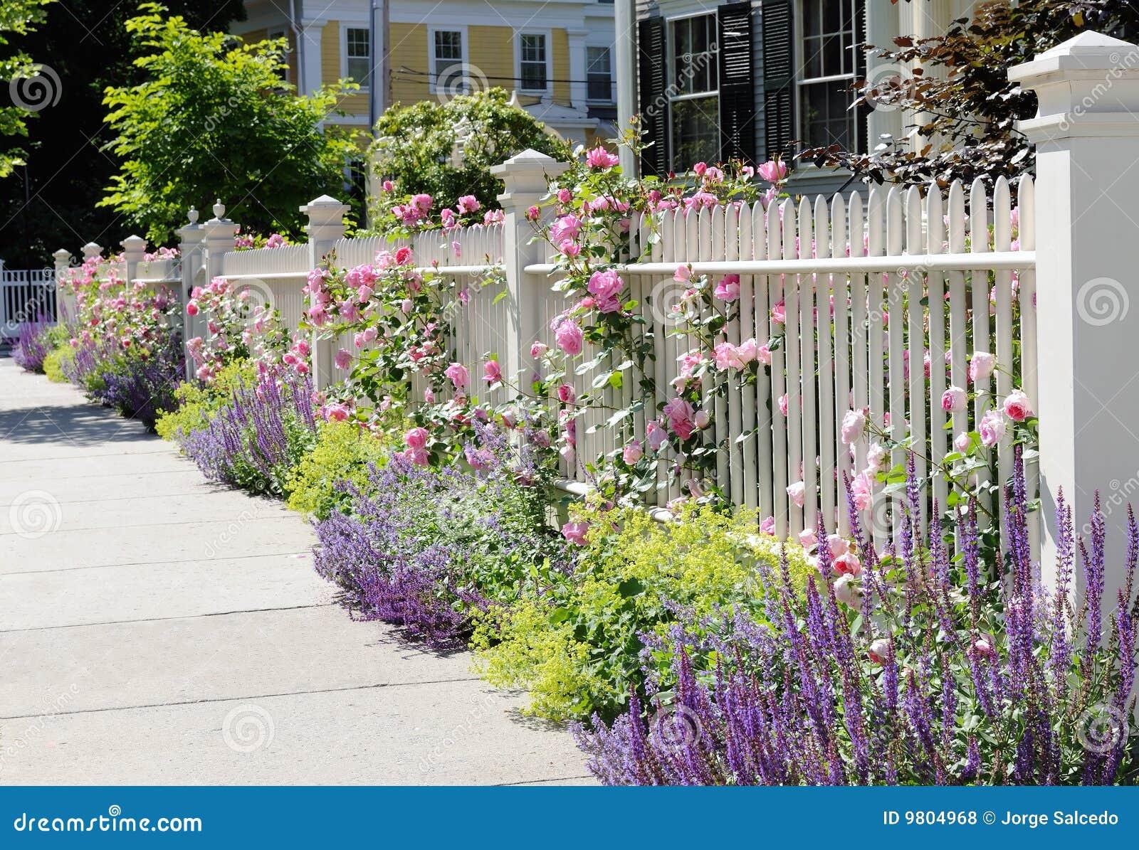 cerca para jardim branca:Spring Flowers with White Fence