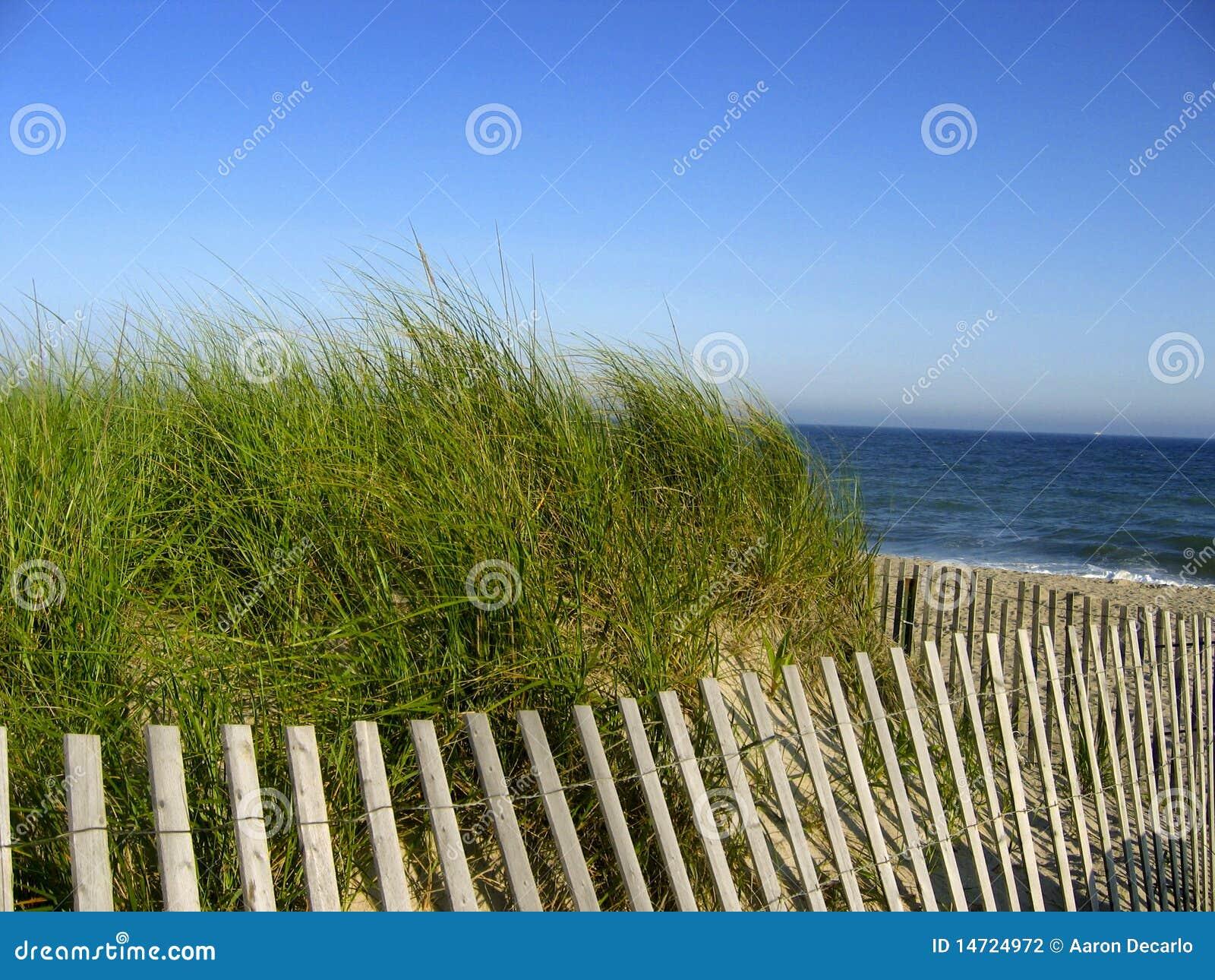 Cerca da praia