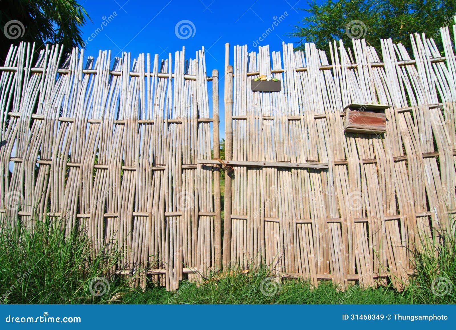 cerca de bambu no jardim da frente e no céu azul mr no pr no 0 428 0